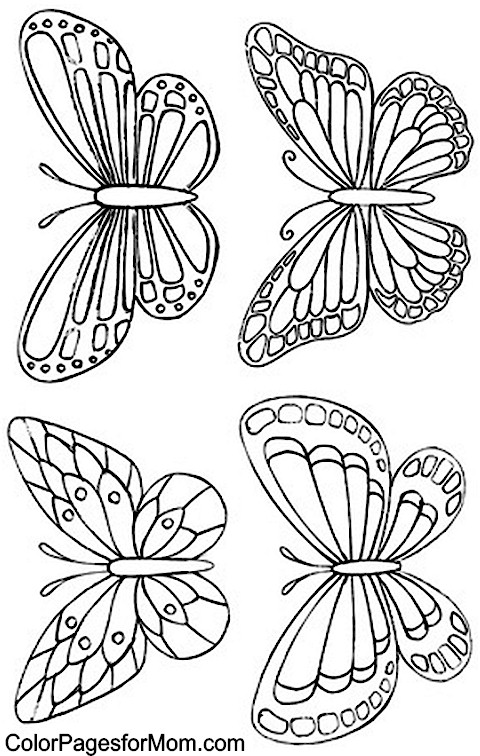 Butterfly Designs Artists Coloring Book : Free coloring pages of adult butterfly