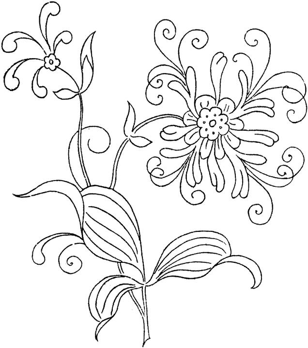 Colouring Sheets Of Flowers :