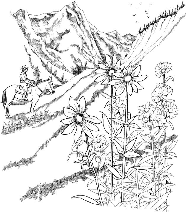 detailed landscape coloring pages for adults | Detailed Landscape Coloring Pages For Adults Coloring Pages