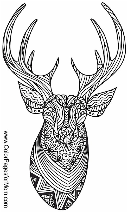 My coloring book: animals for mac free